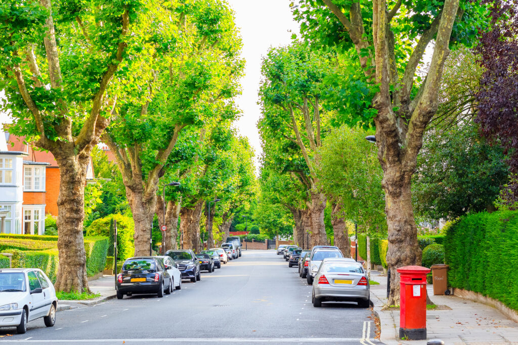 View of street lined with trees in West Hampstead of London